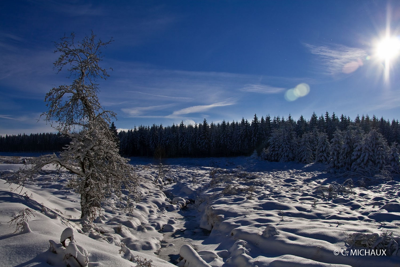 Paysage neige au soleil