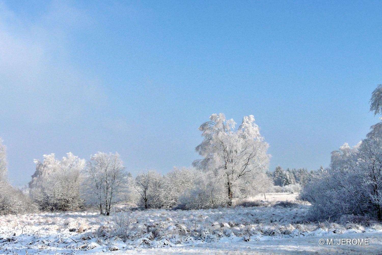 Fagnes neige